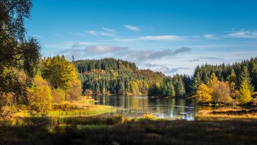 Loch Lomond National Park, Stirling Castle & the Kelpies Tour