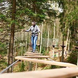 Go Ape Tree top course - Adventure Tour